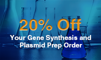 Gene Synthesis and Plasmid Prep Order 1