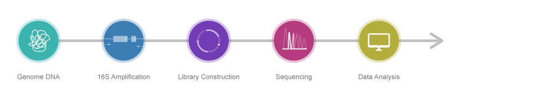16S-rDNA-sequencing