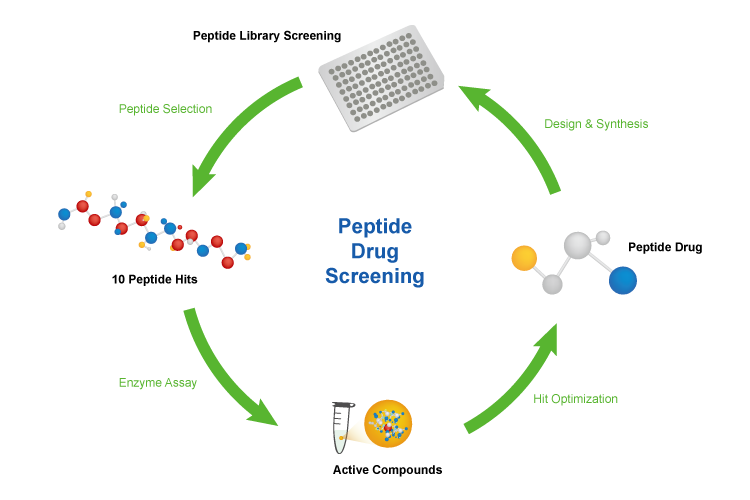 peptide-library-screening-workflow